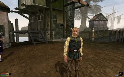 The Elder Scrolls III- Morrowind