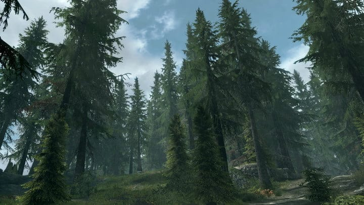 best skyrim mods - Skyrim Flora Overhaul