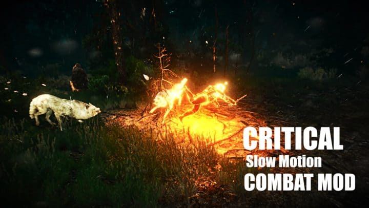 Critical Slow Motion Combat Mod