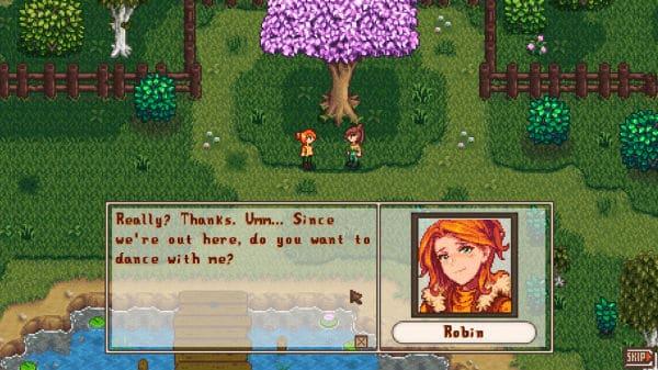 Stardew Valley mod - Robin Romance